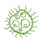 kill bacteria using steam icon caggo