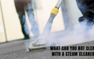 What can you not clean with a steam cleaner?