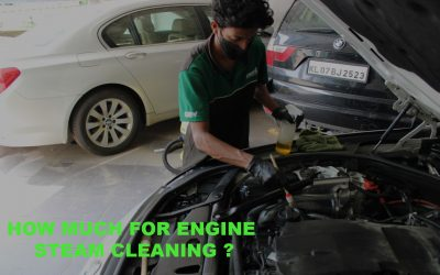 How much does it cost to steam clean a car engine?