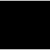 celebritz logo